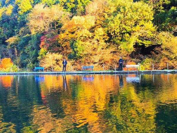 晩秋のトラウト釣り